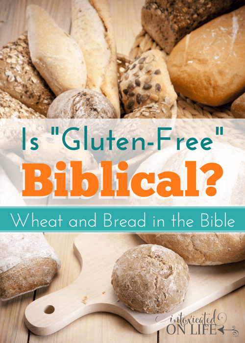 Should Christians eat gluten-free? Is it Biblical? Find out what the Bible has to say. @ IntoxicatedOnLife.com #GlutenFree #WheatFree #Bible