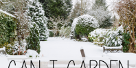 Can I Garden In Winter? | IntoxicatedOnLife.com