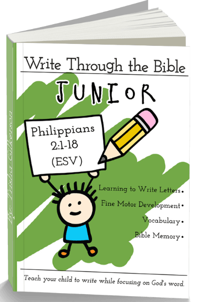 Write Through the Bible, Junior 3d Cover