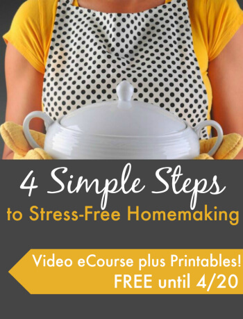 Homemaking eCoure Sidebar Ad