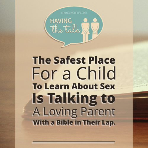 "Scared to talk to your kids about sex? Yeah, every parent feels that way. How do we bring up the topic? How do we make sure we're not sharing ""too much, too soon""? This post shares about a wonderful new step-by-step method for parents to—easily!—share with their kids about God's plan for sex. So much wisdom here for all Christian parents!"