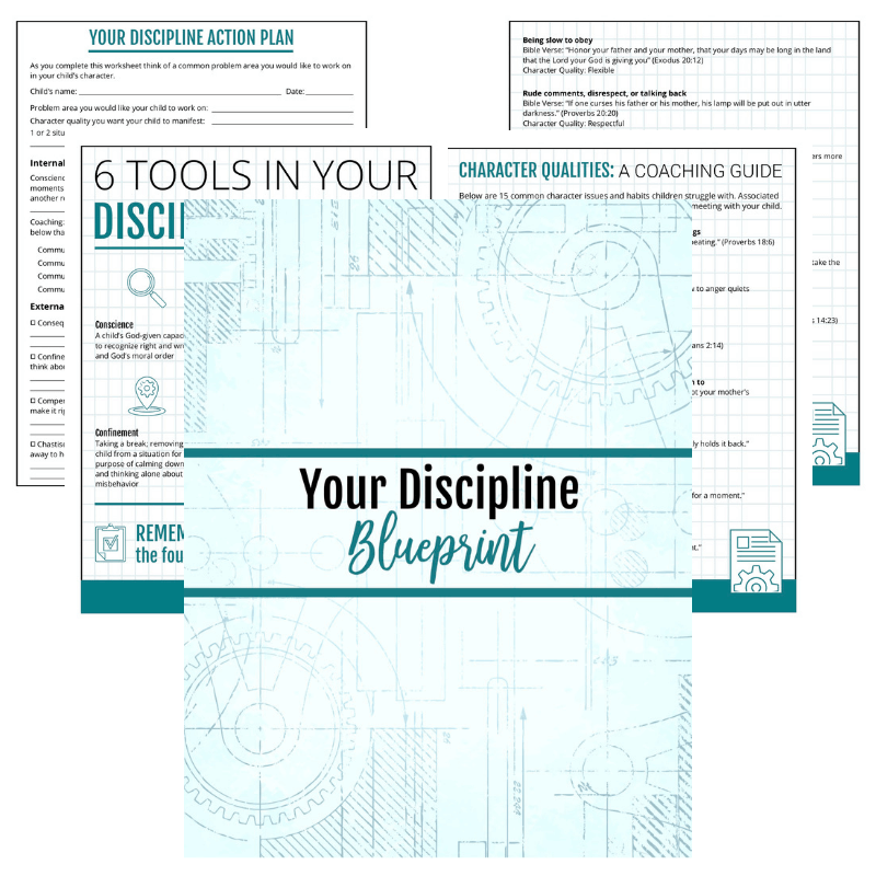 Your Discipline Toolbox: a practical guide to discipline you can actually  stick with (Pathfinder Parenting)