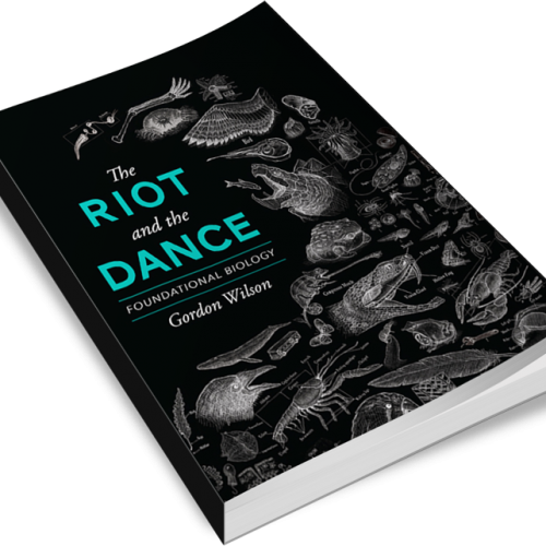 The Riot and the Dance