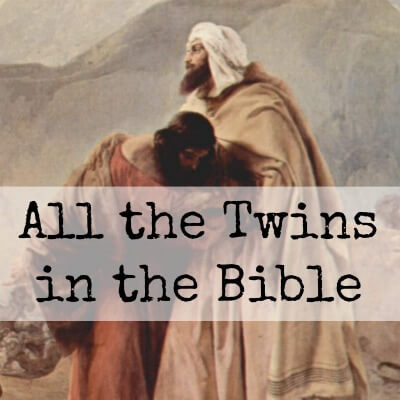Image result for twins in the bible images