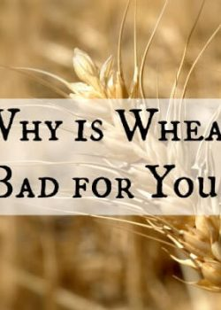 Why is Wheat Bad for You? — 3 Good Reasons to Delete the Wheat