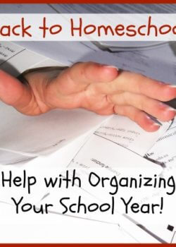 Organize school records