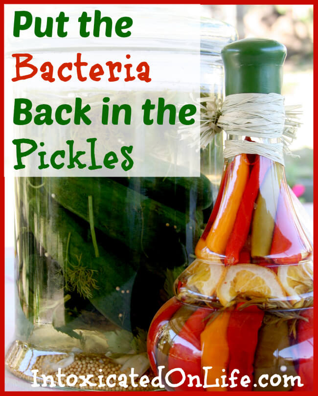 Put the Bacteria Back in the Pickles: Eating Fermented Foods