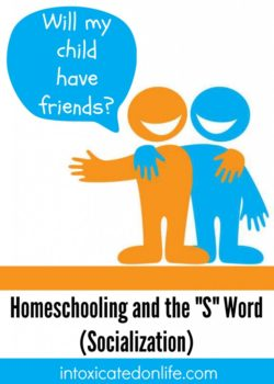 Homeschool-and-socialization-731x1024