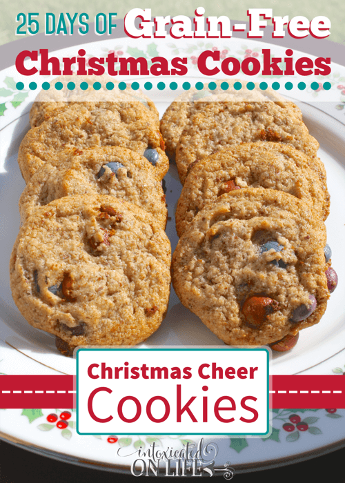 The best way to brighten your day - with these tasty grain-free Christmas Cheer Cookies, of course! Bake them and you're sure to put a smile on your families face :)