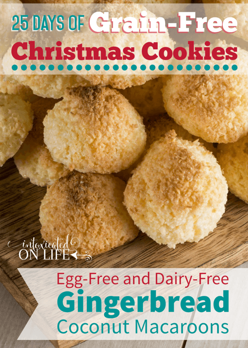 Grain-Free, Egg-Free, and Dairy-Free Gingerbread Coconut Macaroons that are SO full of flavor you won't even miss all of that other stuff. Yum!
