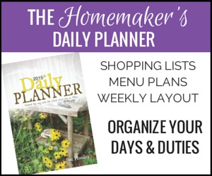 Daily-Planner-300x250-border