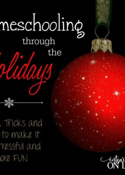 Homeschooling through the Holidays can be stressful or fun!! Here are some tips, tricks and ideas to make it a wonderful experience for you and them!