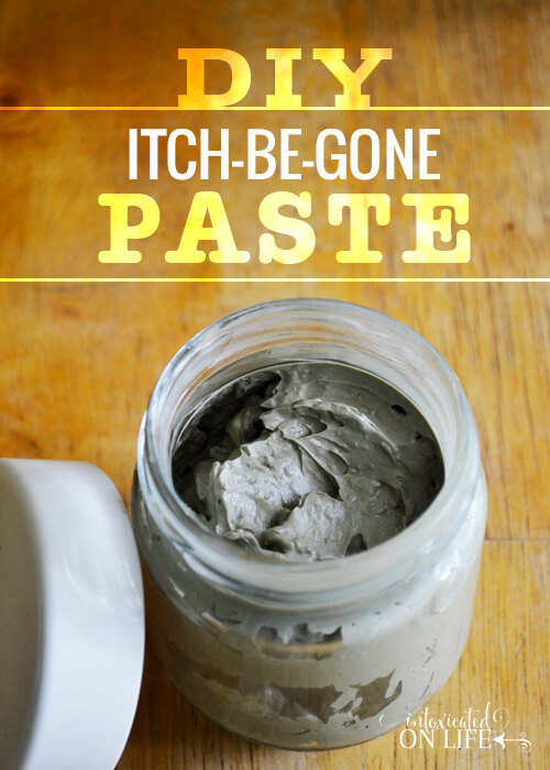 DIY Itch Be Gone Paste