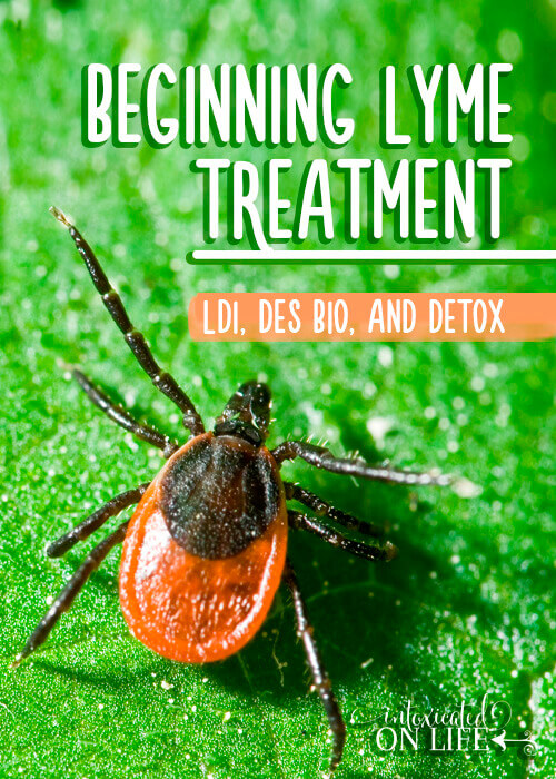 Beginning Lyme Treatment