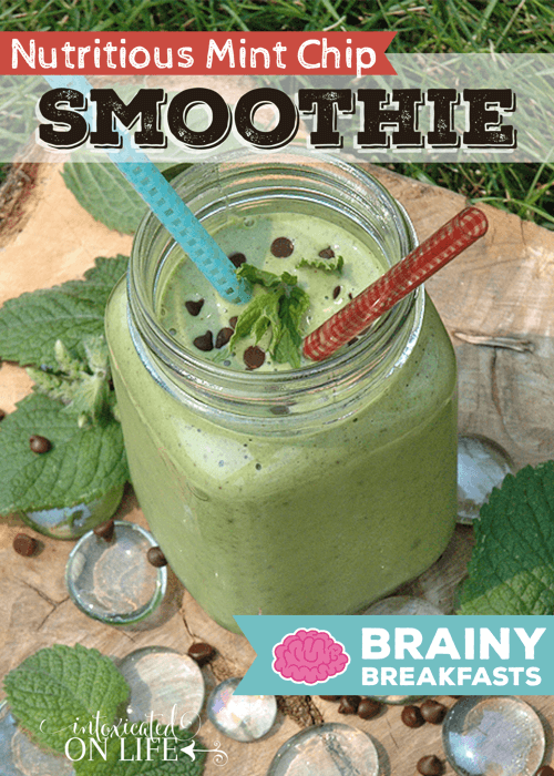 Nutritious Mint Chip Smoothie