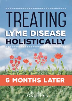 Treating Lyme Disease Holistically