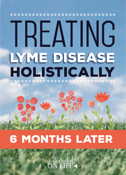 Treating Lyme Disease Holistically: 6 Months Later