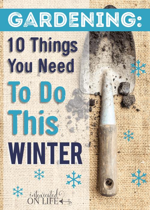 Gardening: importantgardening tasks forthe winter