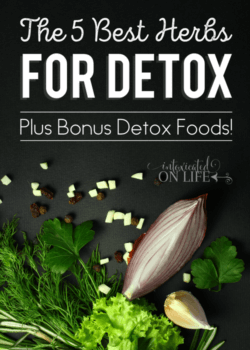 The 5 Best Herbs for Detox (Plus Bonus Detox Foods!)