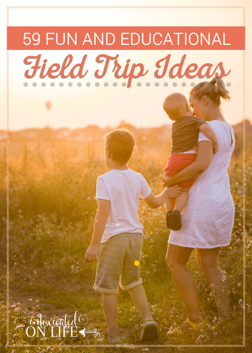 59 Fun And Educational Feild Trip Ideas