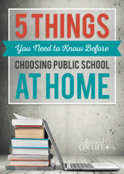 5 Things You Need to Know Before Choosing Public School at Home