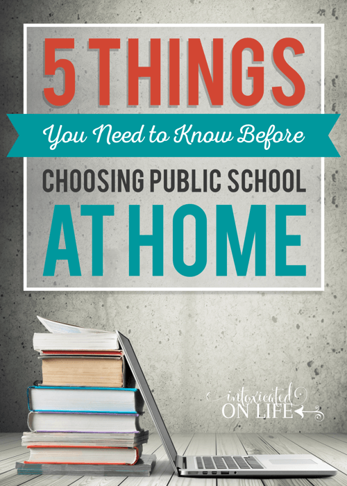 5 Things Youneed To Know Before Choosing Public School At Home