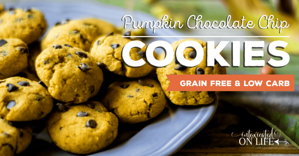 Grain Free And Low Carb Pumpkin Chocolate Chip Cookies FB