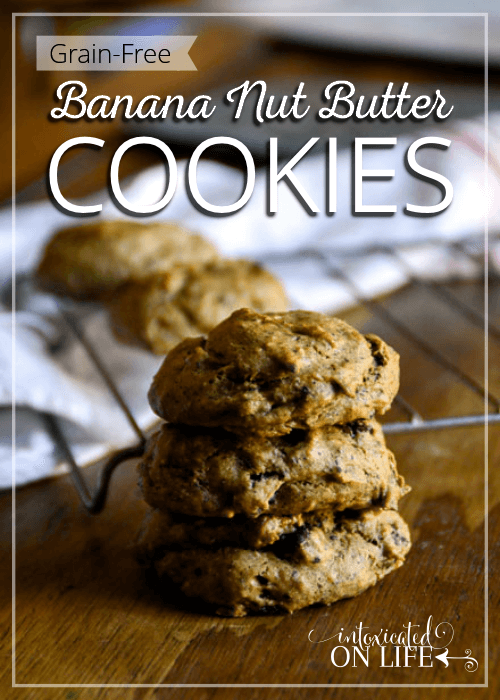 Grain Free Banana Nut Butter Cookies