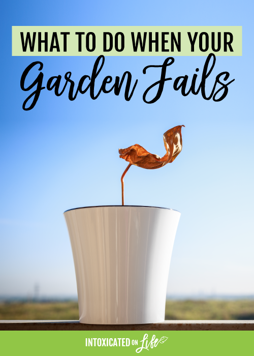 What to do when your garden fails