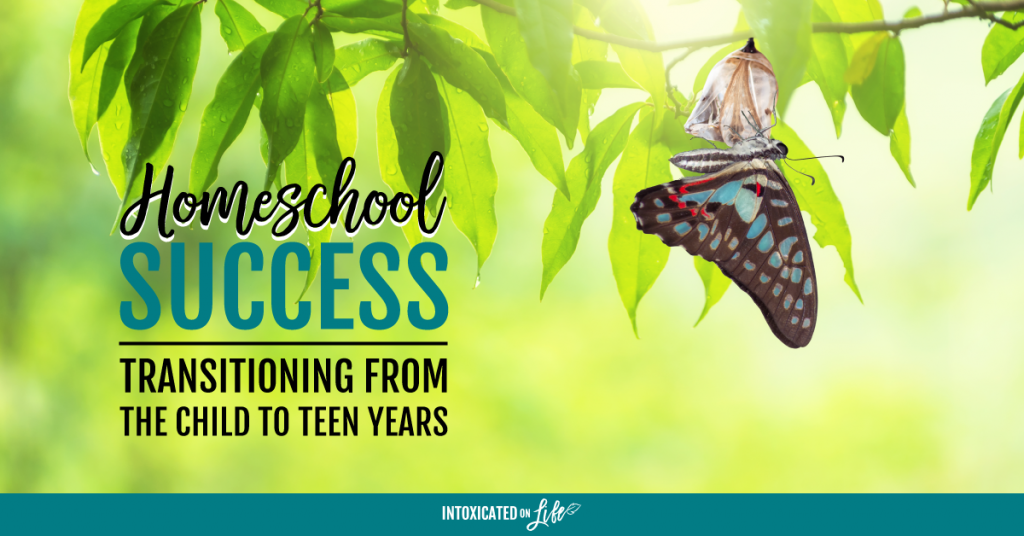 Homeschool Success Transitioning From The Child To Teen Years FB