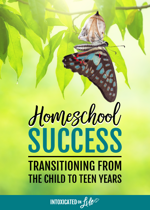 Homeschool Success Transitioning From The Child To Teen Years