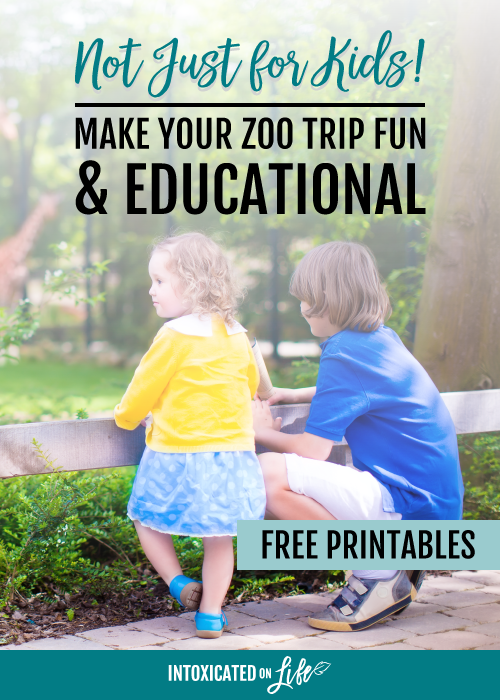 Make your next zoo trip fun and educational