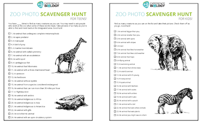 Zoo Photo Scavenger Hunt Preview