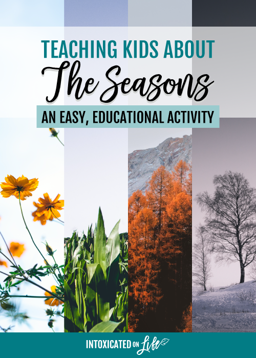 Teaching Kids About The Seasons An Easy Educational Activity