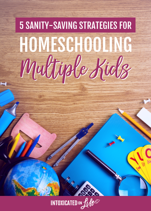 5 Sanity Saving Strategies For Homeschooling Multiple Kids